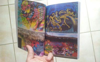 PRESSE – Article de Voyage au Mexique